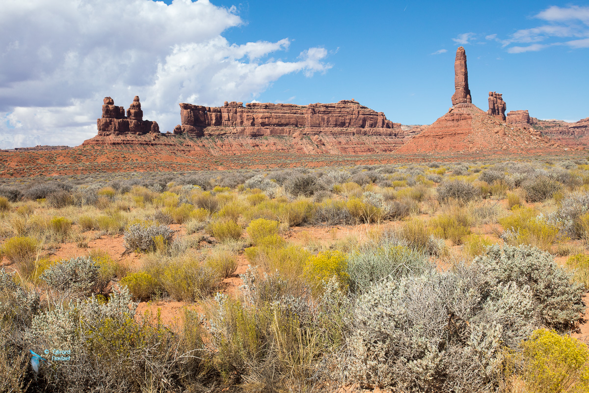 Valley of the gods. U.S.A. Ouest américain.
