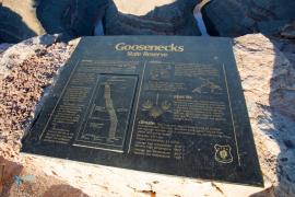 Goosenecks, le cou d'oie