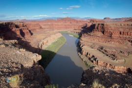 Le Colorado à Canyonlands